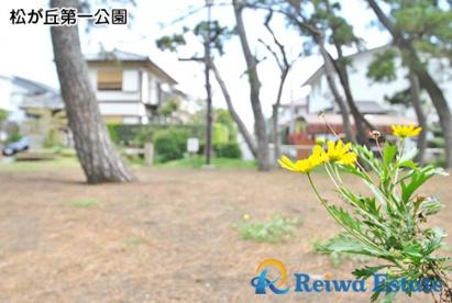 松が丘第一公園の画像4