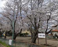矢畑第一公園