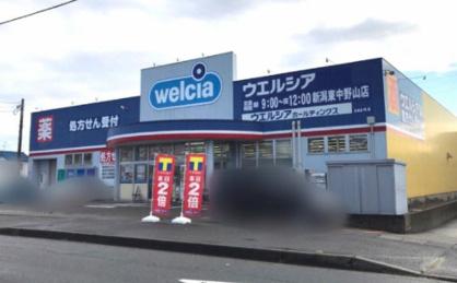 ウエルシア新潟東中野山店の画像1