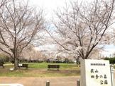 萩山四季の森公園