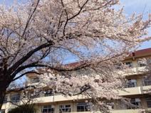 小金井第四小学校