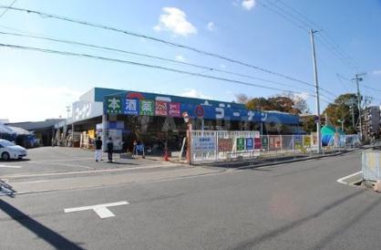 コーナン 菅原店の画像1