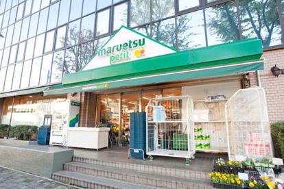 マルエツ プチ 西大井駅前店の画像1