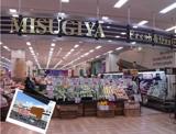 MISUGIYA(三杉屋)天王寺ミオ店