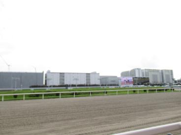 川崎競馬場の画像2