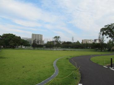 富士見公園市民広場の画像1