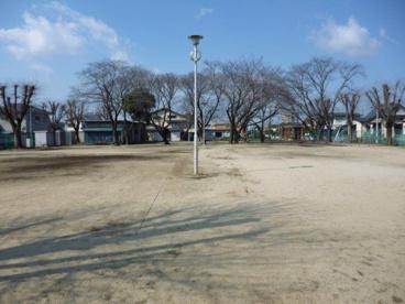 桜木公園の画像2