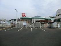 コメリハード&グリーンあきる野伊奈店