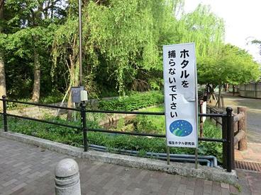 ほたる公園(福生市)の画像1