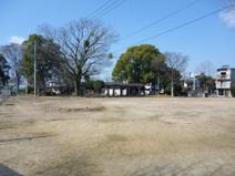 秋津中央公園