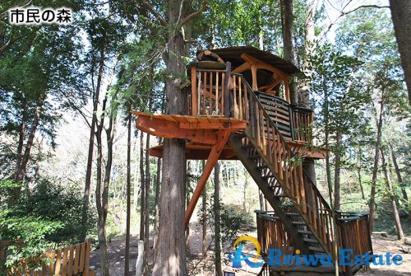 市民の森の画像1
