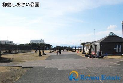 柳島しおさい公園の画像1