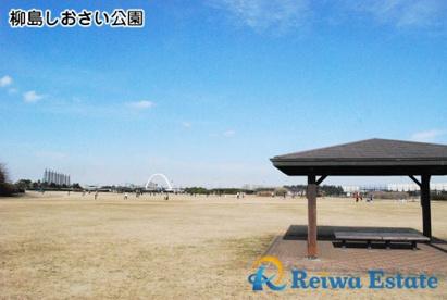 柳島しおさい公園の画像2