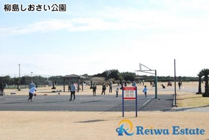 柳島しおさい公園の画像5