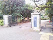 駒場野公園