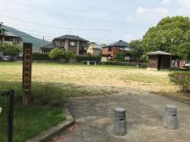 大塘小伝木公園