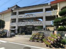 熊本市立中島小学校