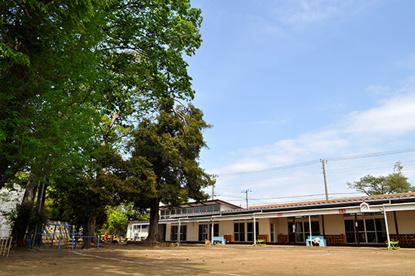 裕和幼稚園の画像1
