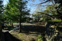 三ッ沢公園(子供の遊び場)