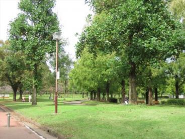川越水上公園の画像2