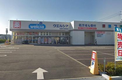 ウエルシア松原天美東店の画像1