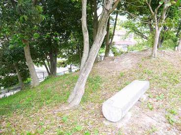 藤ノ木台緑地の画像2