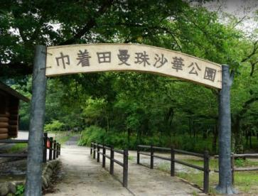 巾着田曼珠沙華公園の画像1