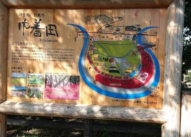巾着田曼珠沙華公園の画像2