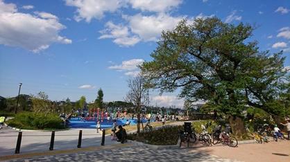 下高井戸おおぞら公園の画像1