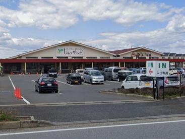 JA千葉みらい農産物直売所しょいかーご 千葉店の画像1