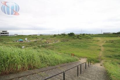 津之江公園の画像1