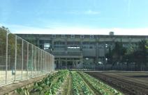 熊本市立 飽田中学校