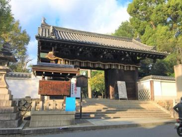 御香宮神社の画像1