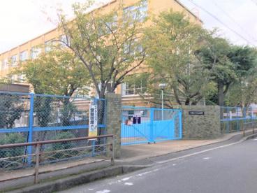 京都市立桃山小学校の画像1