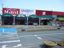 MARUEI(マルエイ) 植木店