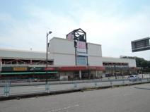 Olympic(オリンピック) 藤沢店
