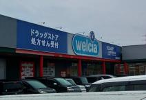 ウエルシア入間武蔵藤沢店