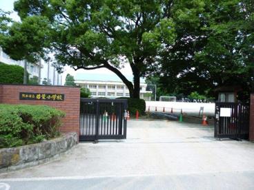 熊本市立若葉小学校の画像1