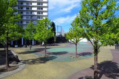 妙正寺川公園の画像1
