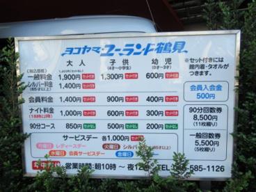 ヨコヤマ・ユーランド鶴見の画像2