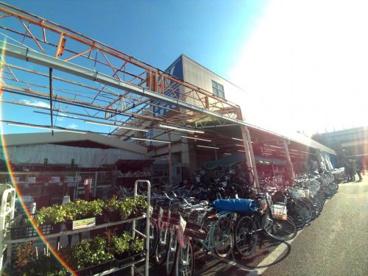 スーパーバリュー 杉並高井戸店の画像2