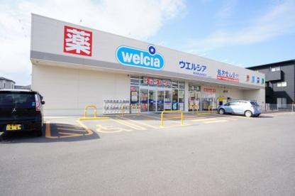 ウェルシア 新潟南出来島店の画像1