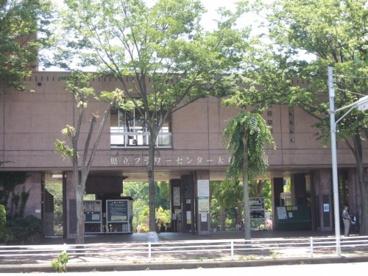 神奈川県立フラワーセンター大船植物園の画像1