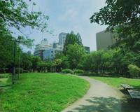 築地川公園