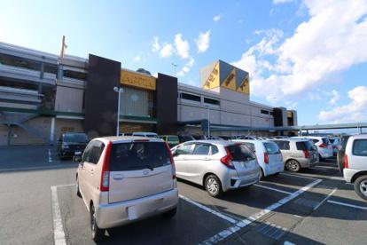 アピタ 大仁店の画像1