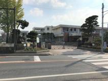 飽田東小学校