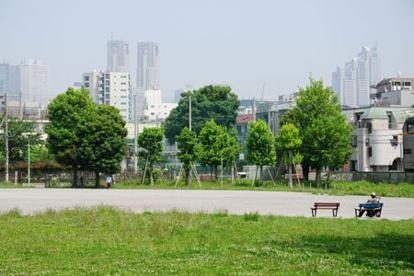 本五ふれあい公園多目的運動場の画像1