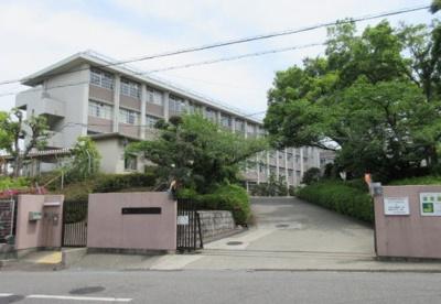 大阪府立鳳高校の画像1