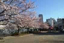本山前桜公園