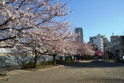 本山前桜公園の画像1